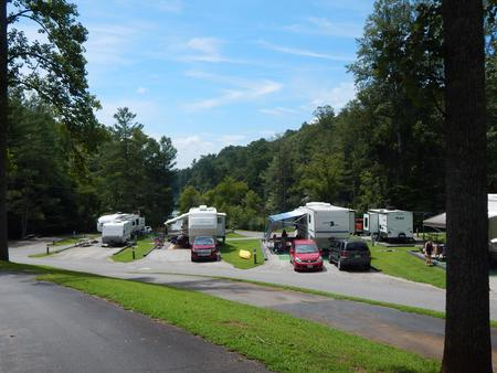 Trailers and RVs set-up in their sites at Salthouse Branch CampgroundRVs and trailers set-up at the campground