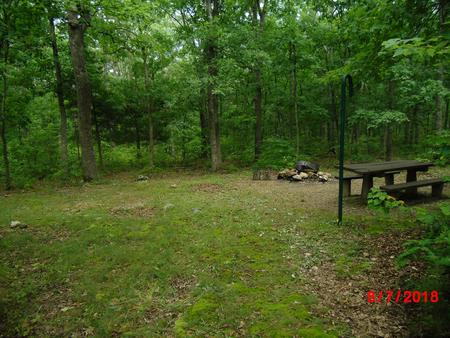 Walk-in campsite 9 is well off in the woods about 100 yards from your vehicle.Walk-in campsite 9