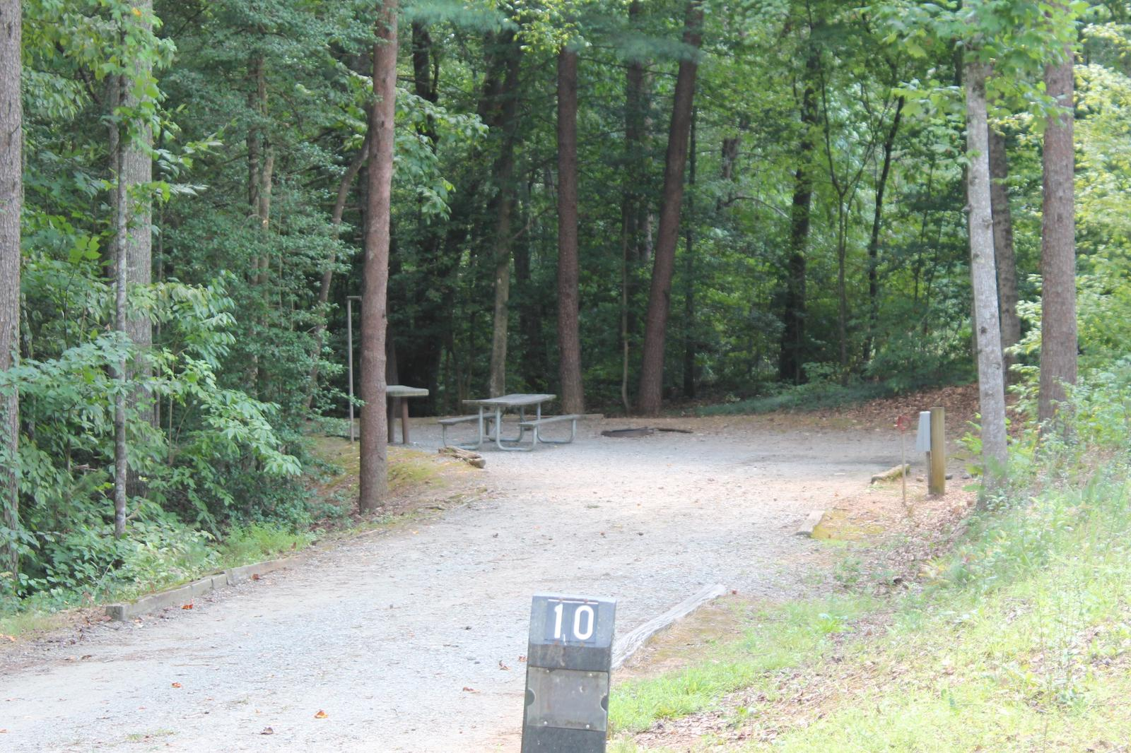 Long gravel site surrounded by tall trees with fire pit, table, grill Long gravel site with fire pit, table, grill