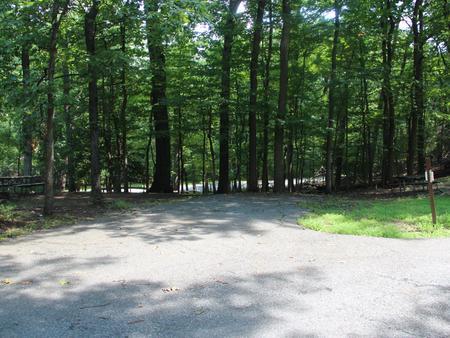 Greenbelt Park CampgroundB Loop Site 50