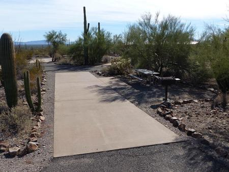 Pull-thru campsite with picnic table and grill, cactus and desert vegetation surround site.  Site 014