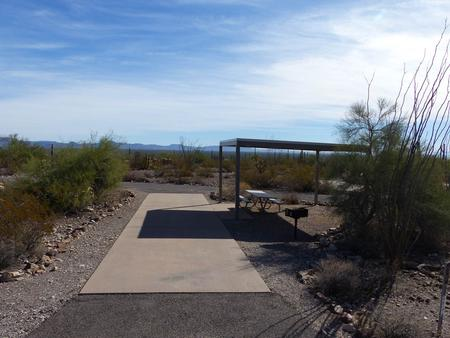 Pull-thru campsite with sunshade, picnic table, and grill, cactus and desert vegetation surround site.  Site 015