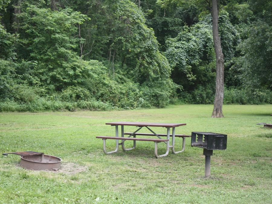Campsite with picnic table, grill and fire ring