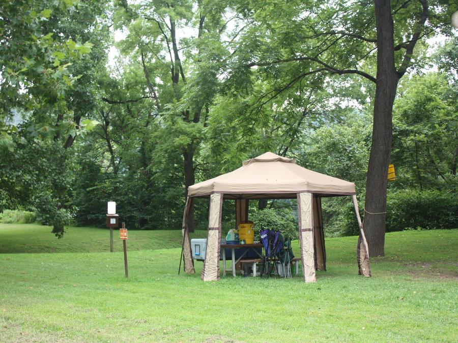 Campsite with pop-up tent over picnic table