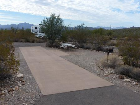 Pull-thru campsite with picnic table and grill, cactus and desert vegetation surround site.  Site 016