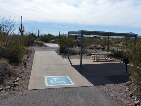Pull-thru campsite with sunshade, picnic table and grill, cactus and desert vegetation surround site. Handicap logo is visible on the ground.Site 17