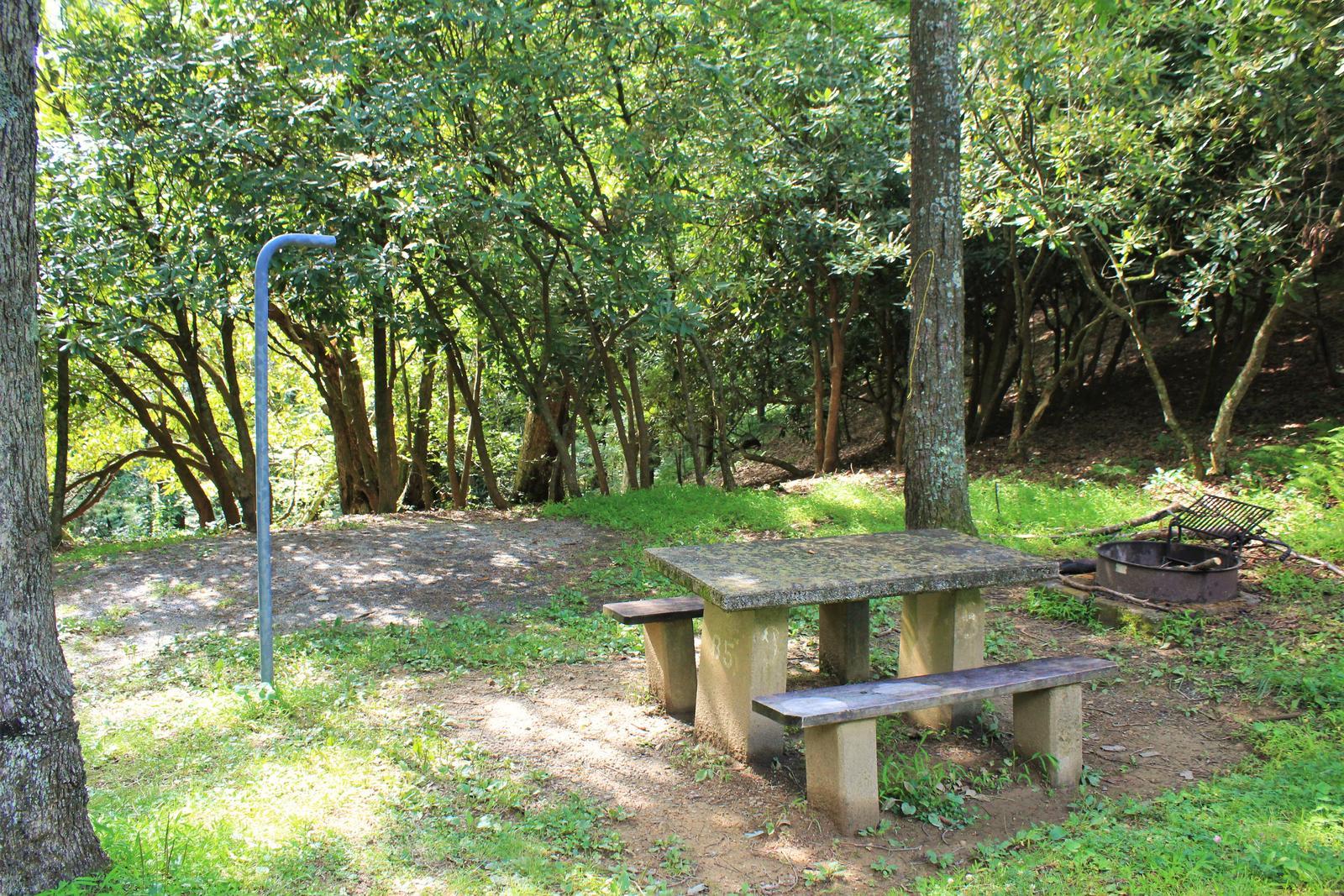 C85 Tent Site Photo