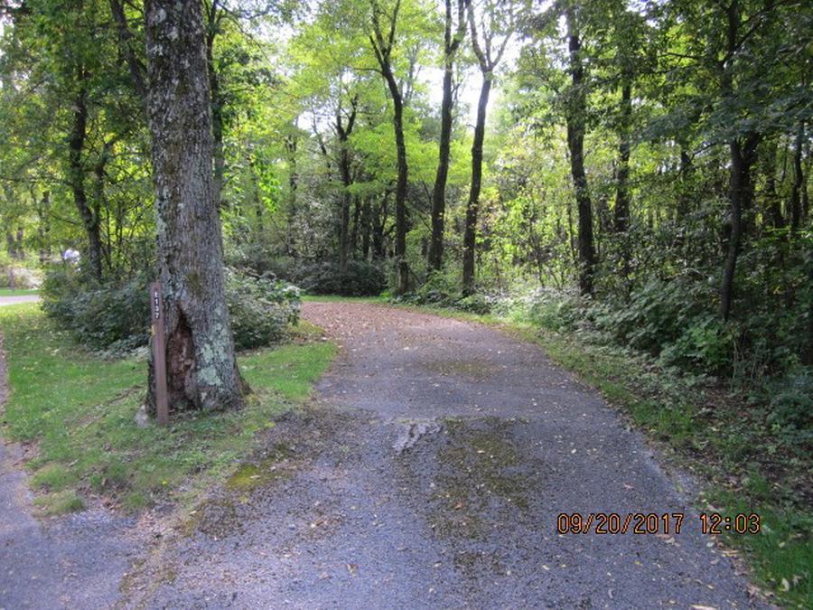 Loft Mountain Campground - Site E137