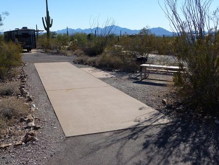 Pull-thru campsite with picnic table and grill, cactus and desert vegetation surround site.  Site 018