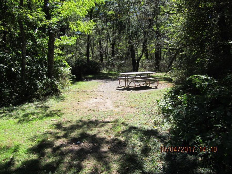 Loft Mountain Campground - Site D113