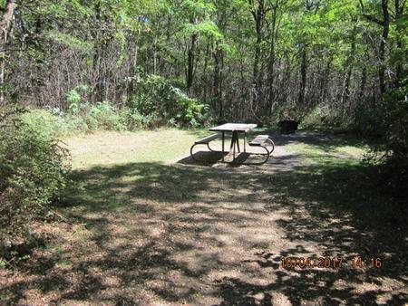 Loft Mountain Campground - Site D114