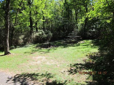 Loft Mountain Campground - Site D115
