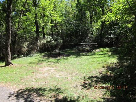 Loft Mountain Campground - Site D115