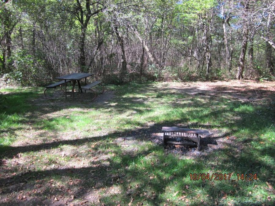 Loft Mountain Campground - Site D116