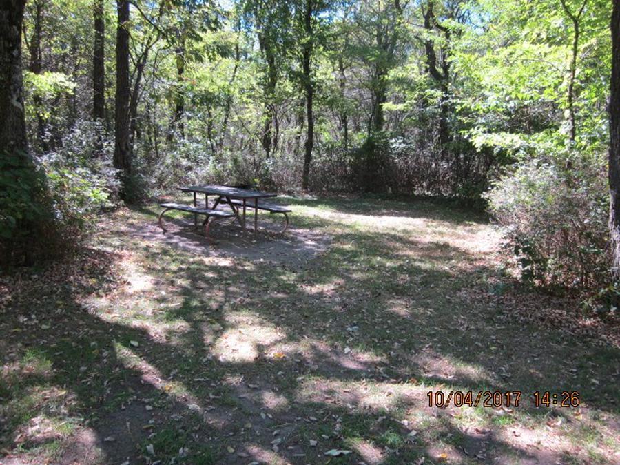 Loft Mountain Campground - Site D117