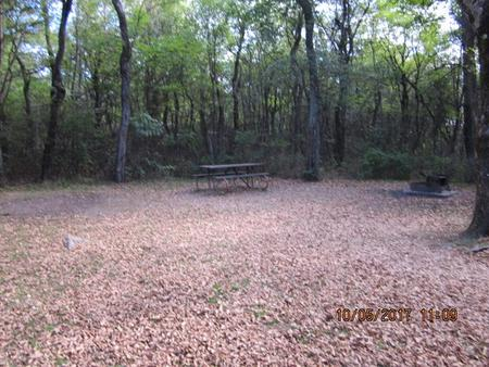 Loft Mountain Campground - Site D118