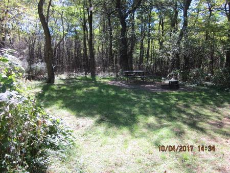 Loft Mountain Campground - Site D119