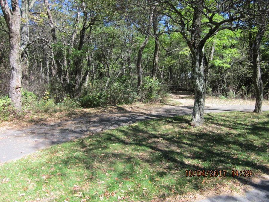 Loft Mountain Campground - Site D120