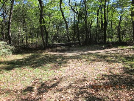 Loft Mountain Campground - Site D120
