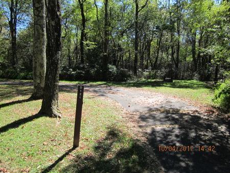 Loft Mountain Campground - Site D121