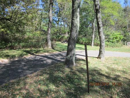 Loft Mountain Campground - Site D124