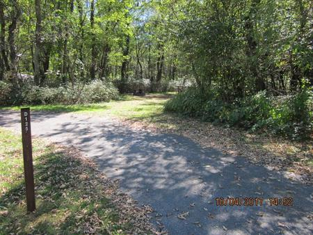 Loft Mountain Campground - Site D125