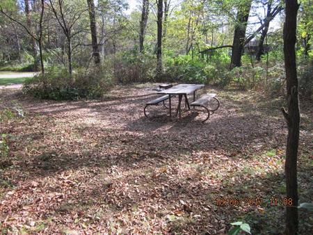 Loft Mountain Campground - Site D127