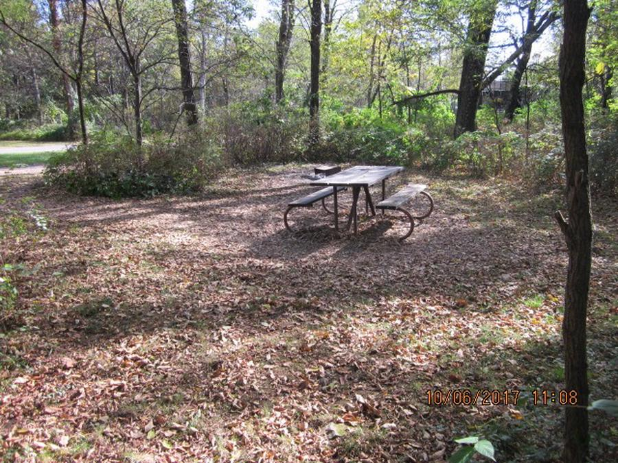 Loft Mountain Campground - Site D127
