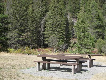 Site 1 campsite,  pine trees along river, picnic table & fire ringSite 1