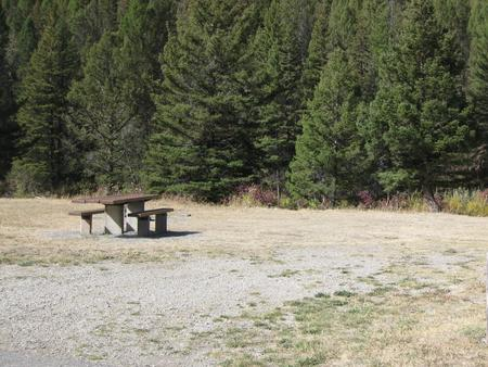 Site 2 campsite - pine trees along river, picnic table & fire ringSite 2