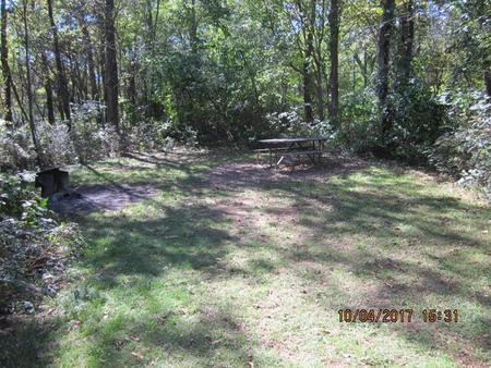 Loft Mountain Campground - Site D132