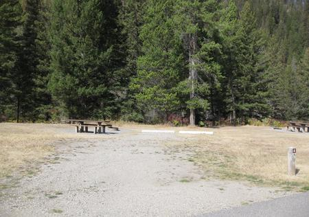 Site 4 campsite -  pine trees along river, picnic table & fire ringSite 4