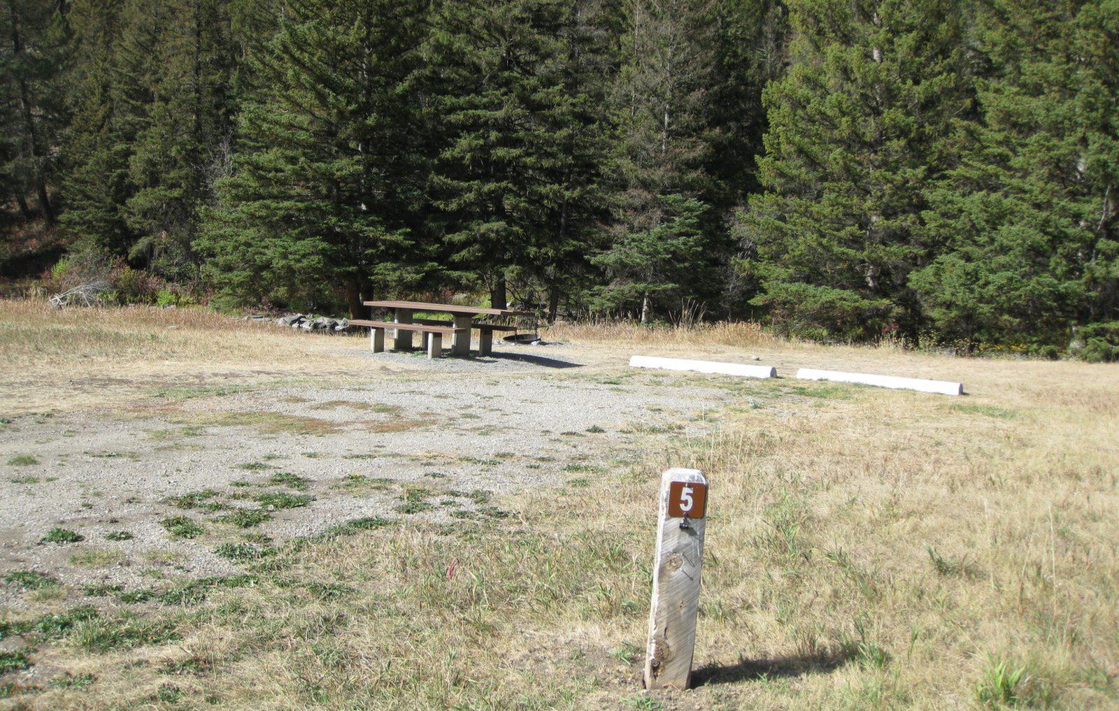 Site 5 campsite - pine trees along river, picnic table & fire ringSite 5