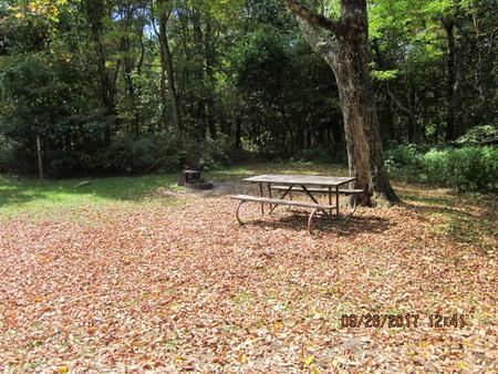Loft Mountain Campground - Site E133