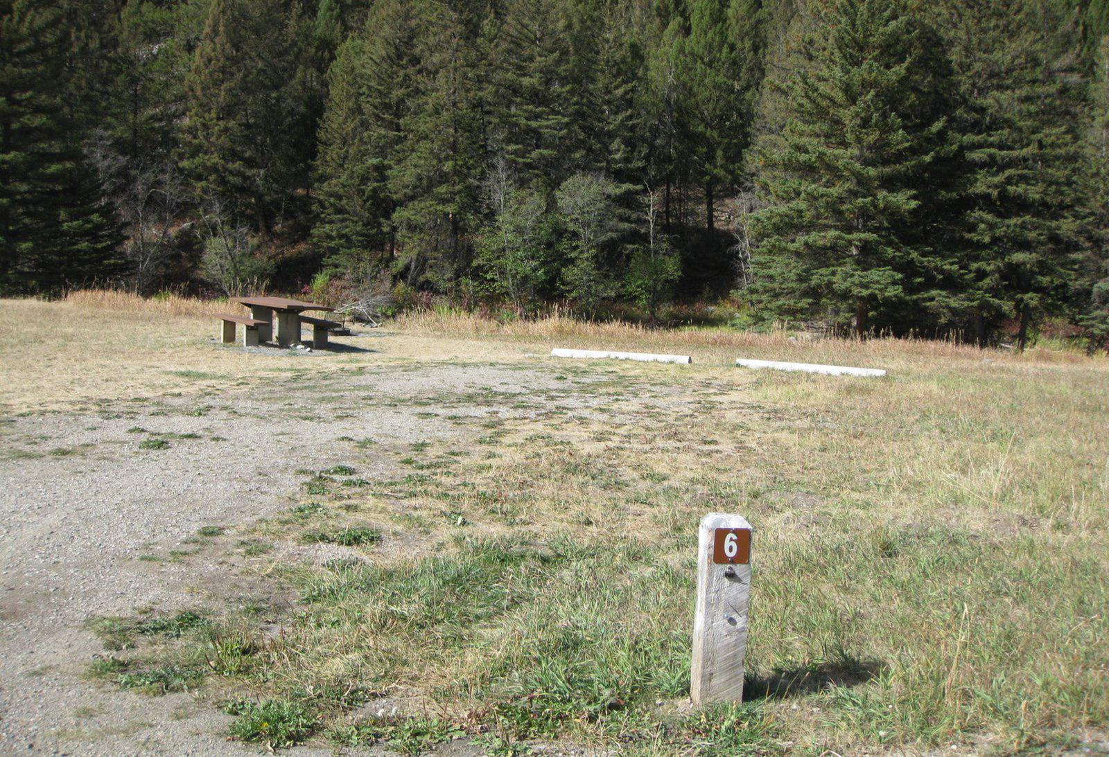 Site 6 campsite - pine trees along river, picnic table & fire ringSite 6