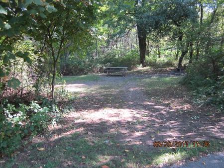 Loft Mountain Campground - Site E134