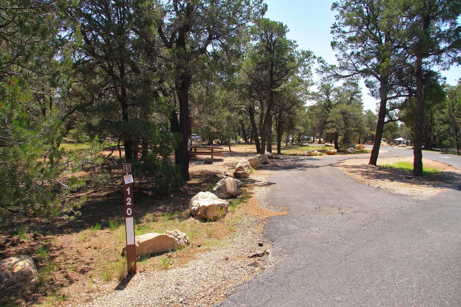 Picnic table, fire pit, and parking spot, Mather CampgroundPicnic table, fire pit, and parking spot for Juniper Loop 120, Mather Campground