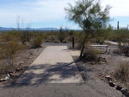 Pull-thru campsite with picnic table and grill, cactus and desert vegetation surround site.  Site 023