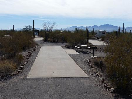 Pull-thru campsite with picnic table and grill, cactus and desert vegetation surround site.  Site 024