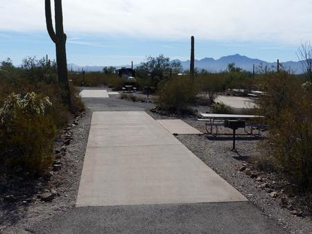 Pull-thru campsite with picnic table and grill, cactus and desert vegetation surround site.  Site 025