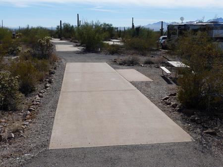 Pull-thru campsite with picnic table and grill, cactus and desert vegetation surround site.  Site 027