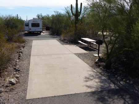 Pull-thru campsite with picnic table and grill, cactus and desert vegetation surround site.  Site 029