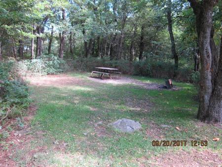 Loft Mountain Campground - Site E146