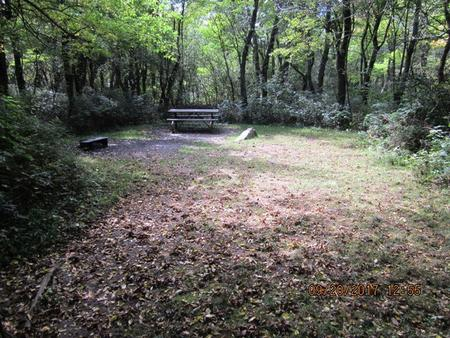 Loft Mountain Campground - Site E147