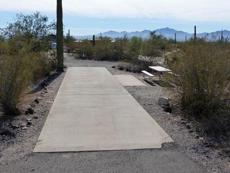 Pull-thru campsite with picnic table and grill, cactus and desert vegetation surround site.  Site 036