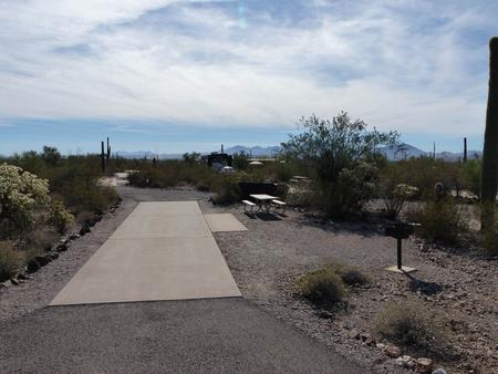 Pull-thru campsite with picnic table and grill, cactus and desert vegetation surround site.  Site 037