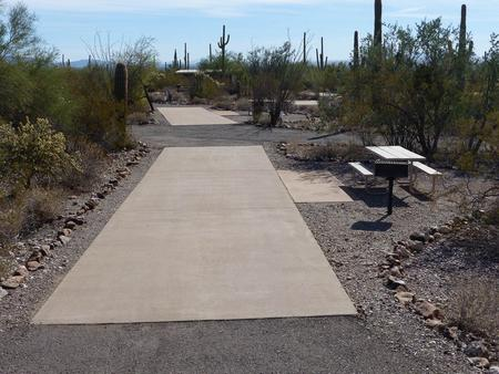 Pull-thru campsite with picnic table and grill, cactus and desert vegetation surround site.  Site 042