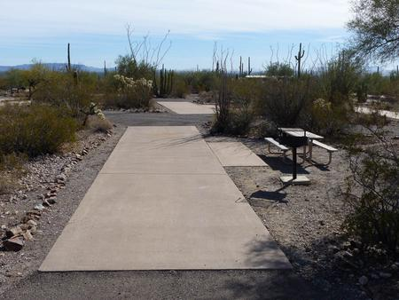 Pull-thru campsite with picnic table and grill, cactus and desert vegetation surround site.  Site 043