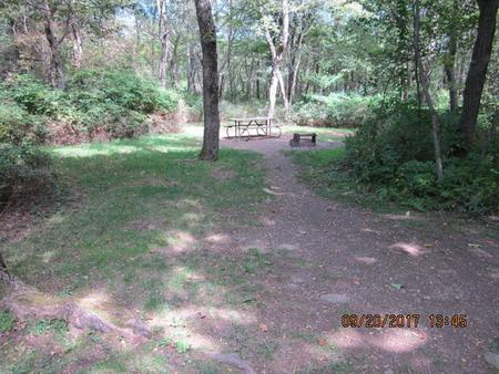 Loft Mountain Campground - Site E154