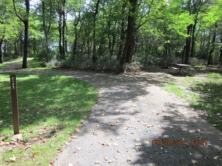 Loft Mountain Campground - Site E155